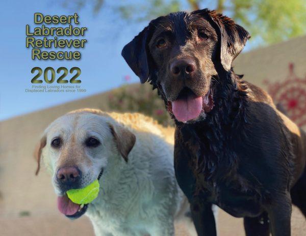 DLRR 2022 Calendar